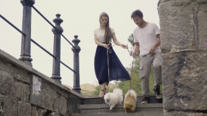 А.П. Чехов. «Дама с собачкой»