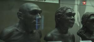 Дело каменного века: кто убил неандертальцев